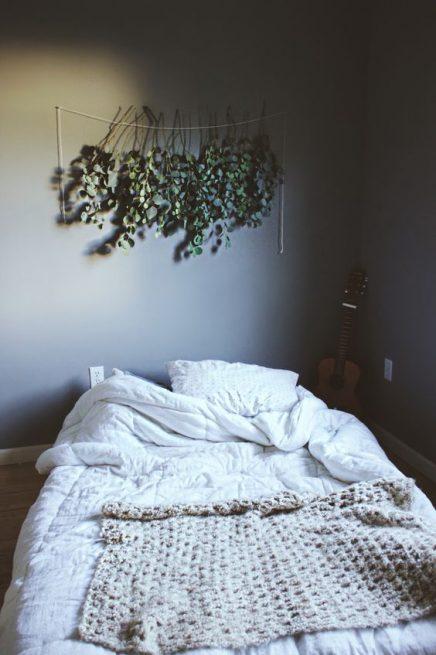 eucalyptus-in-haus-20