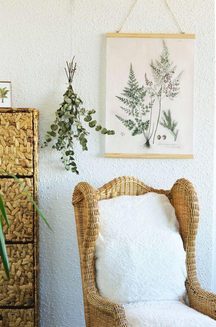 eucalyptus-in-haus-3