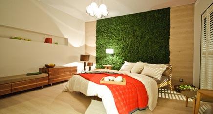 Creative Green in Ihrem Raumgestaltung mit Evergreen