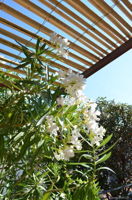 gestalten-sie-sonnigen-balkon-terrasse-von-30m2 (8)