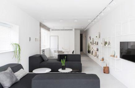 lange-schmale-wohnung-mit-weisen-modernen-interieur-11