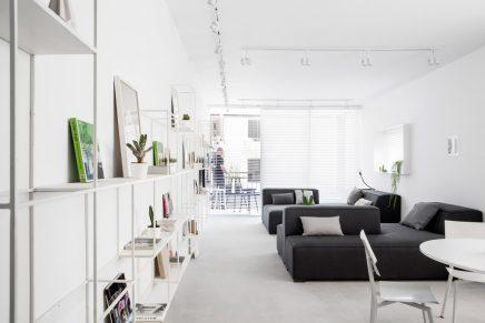 lange-schmale-wohnung-mit-weisen-modernen-interieur-5