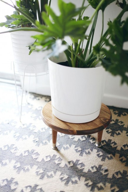 pflanzen-standard (8)