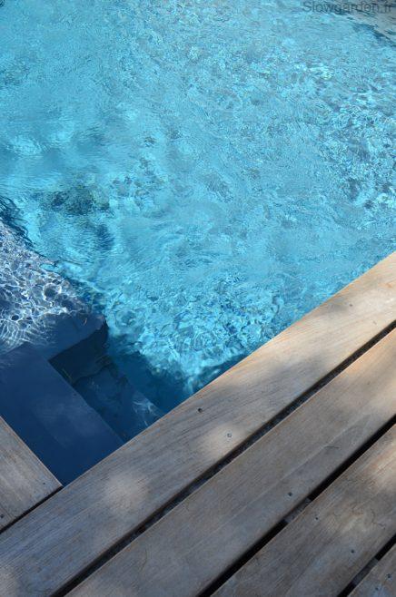 pflegeleichter-garten-pool (9)
