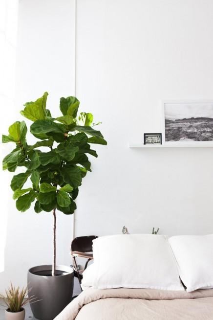 studio loft-jeanette-mikul (5)