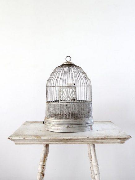 vogelkafig-zu-hause (13)
