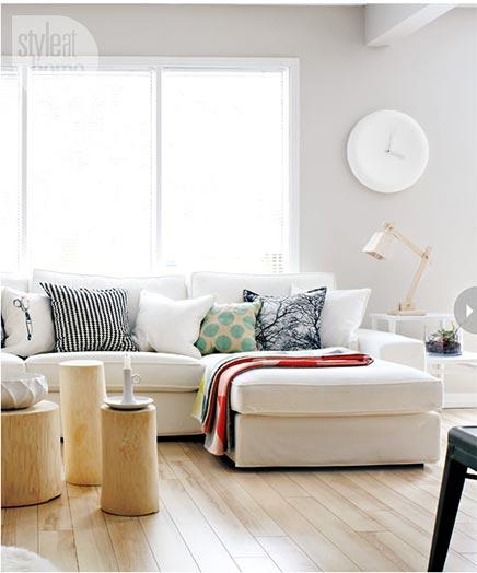 Wohnzimmer mit kanadischen und skandinavischen Einflüssen